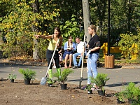 """Our forest. Plant your tree."" has become a good tradition for TsAGI employees"