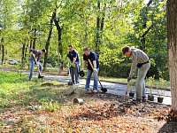 Young trees, saplings, shrubs and perennials were planted